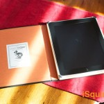 The Best Holiday Present – The DodoCase for the iPad